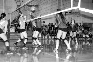 volleyball abby marts