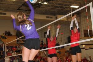 volleyball bailey volmer