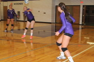 volleyball dacey kocer