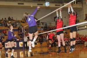 volleyball frazir