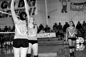 volleyball hrabanek and kinzer