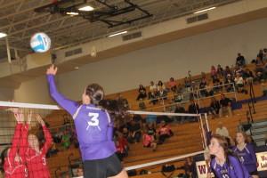 volleyball sydney fritz