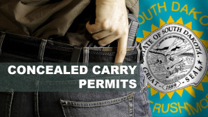 Concealed+Carry+Permits1