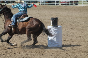 rodeo stetson shelbourn